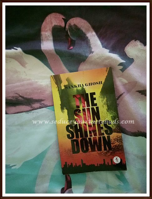 The Sun Shines Down - Book Review
